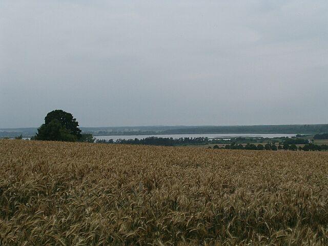 Widok na Jezioro Żarnowieckie (3837)