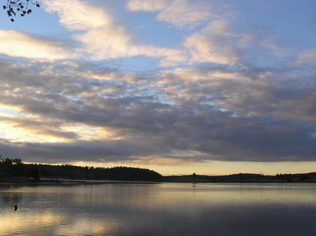Jezioro Niezabyszewskie