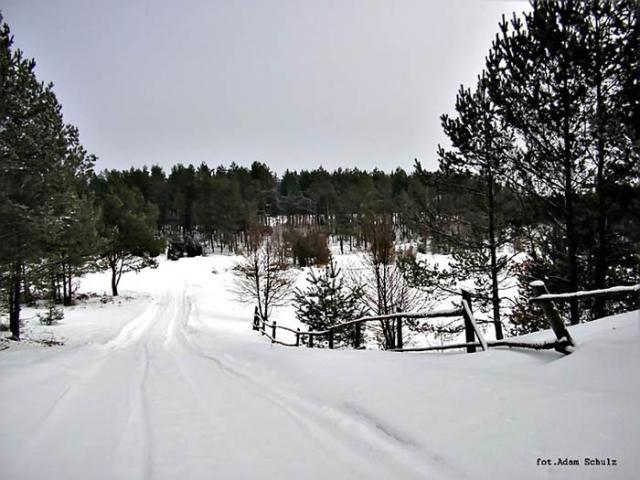 Zima w Gostomiu