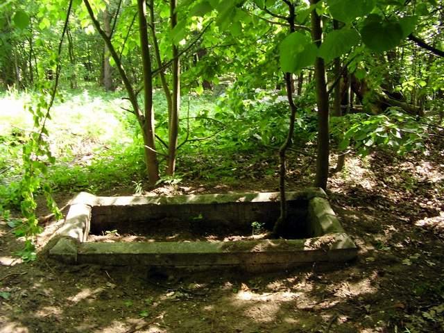 Bolszewo - cmentarz żydowski (5)