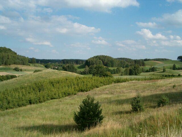 Pola, łąki, wzgórza