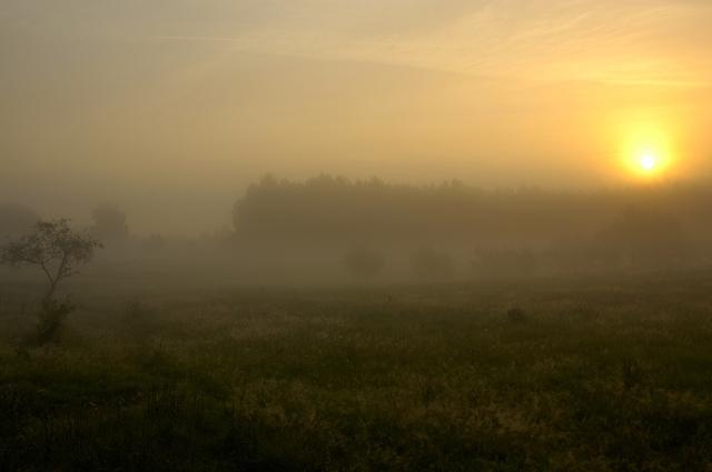 Studzienice - o świcie_03