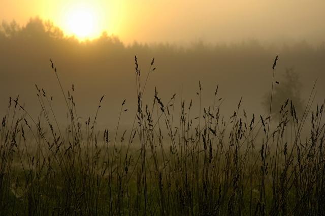Studzienice - o świcie_05