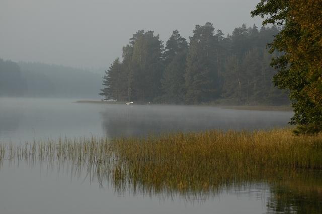 Studzienice - jezioro o poranku-04