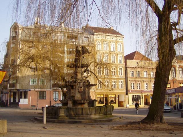 Gryf ze Szczecina