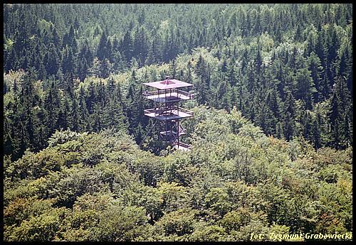 Wieżyca