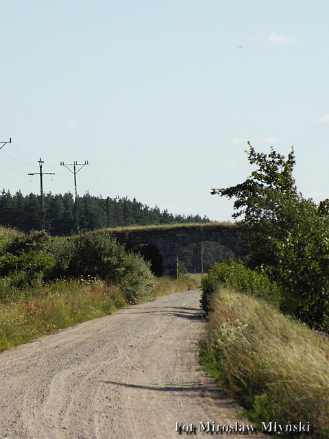 Widok na pierwszy wiadukt od strony Gołubia