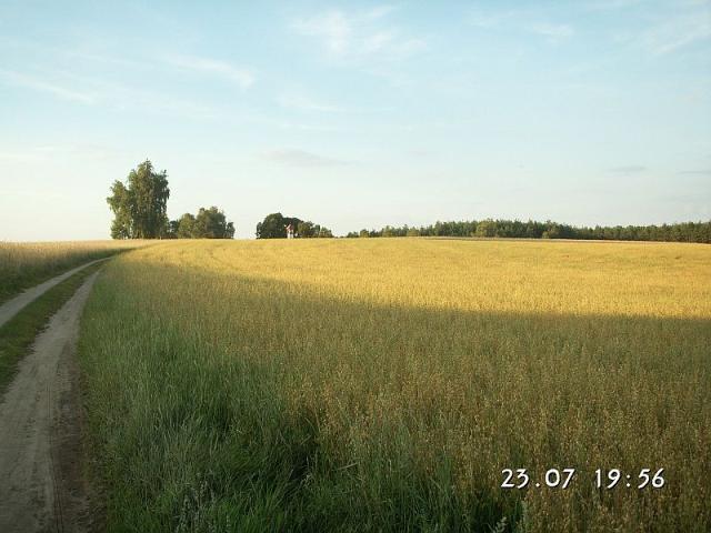 Kapliczka w kaszubskim pejzażu, Borowy Młyn - Brzeźno Szl.