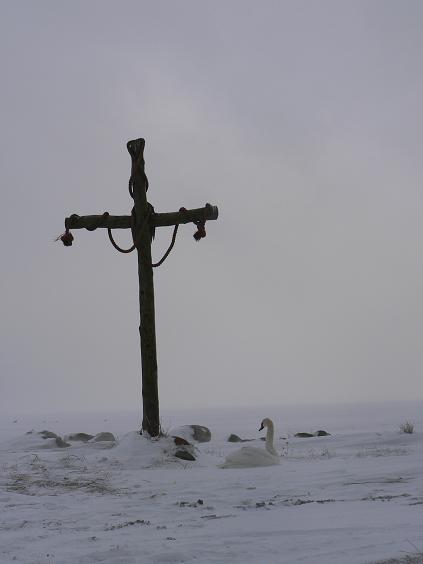Krzyż w Kuźnicy