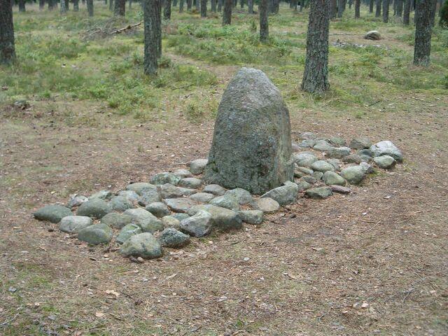 Grzybnica - stela w bruku