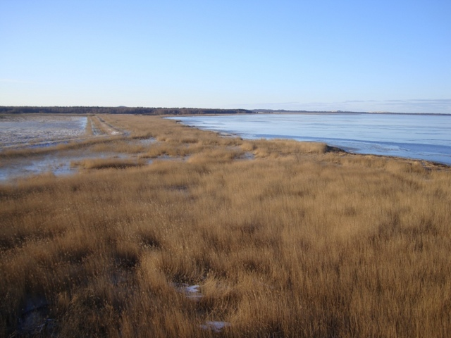 Brzegi Łebskiego Jeziora
