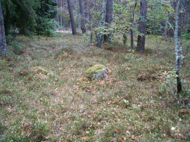 Grobowiec Ł24-(1)