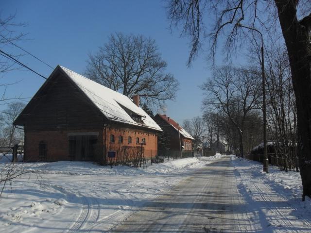 Zómerbarch. Lesnictwò (I)