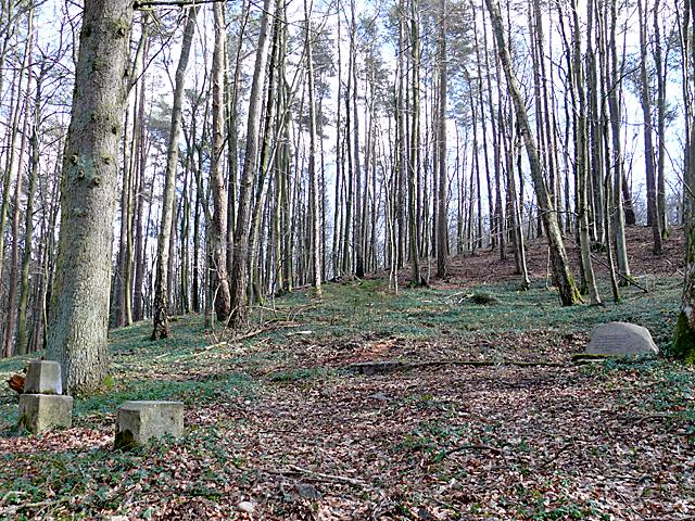 Czymanowo - dawny cmentarzyk właścicieli majątku