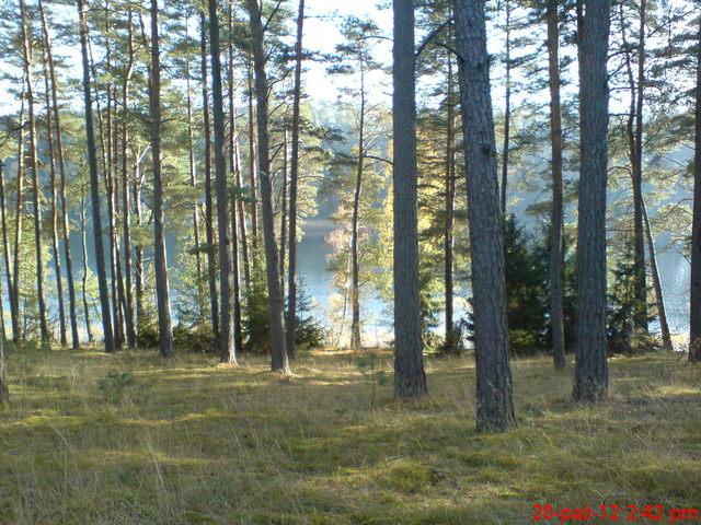 Jezioro Głuche D. w barwach jesieni