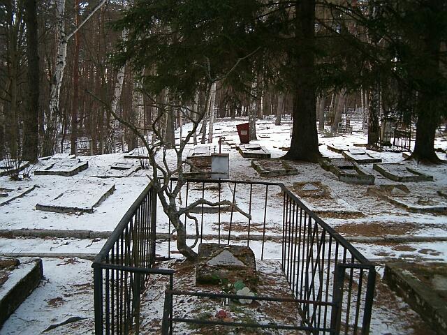 Cmentarz w Bornem Sulinowie (2550)