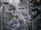 Zima kaszubska na kalwarii w Wejherowie