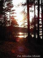Zachód słońca. Lasy wdzydzkie.