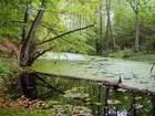 Rzeka Łeba
