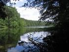 Jezioro Płęsno w m.Małe Swornegacie