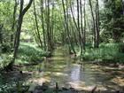 Rzeka Struga Siedmiu Jezior w okolicach m.Małe Swornegacie