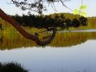 Studzienice - spacer nad jeziorem.