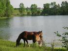 Jezioro Głęboczek- Lipnica