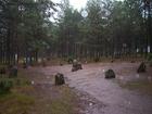 Węsiory - deszczowo 2
