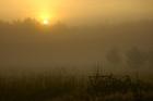 Studzienice - o świcie_01