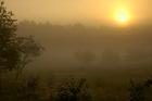 Studzienice - o świcie_02