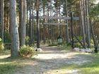 Leśno - wejcie na cmentarzysko