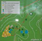 Leśno plansza 2 - plan kręgów