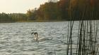 Jezioro Gwiazda