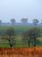 Jesiennie - okolice Łówcza