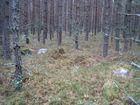 Obiekt w okolicy stanowiska Ł24 (1)