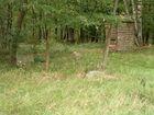 Grobowiec 4 (okolica, 2)