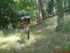 jezioro, las i...rower
