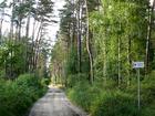 Droga ze wsi Raciąż do grodziska
