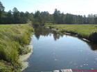 Rzeka Chocina