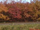 Jesień na Kaszubach (KA)