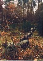 Łupawa - grobowiec megalityczny