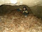 Gdynia. Jaskinia Śpiącego Szweda - wewnątrz (2708)